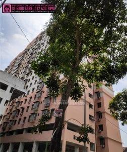 Sri Aman Apartment, TIME, Maxis, Unifi